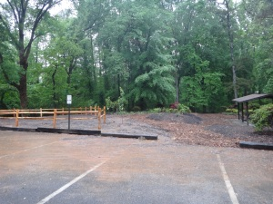 Forest Patio Phs 1 Completion