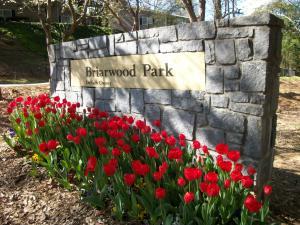 B-Park Spring colour 015